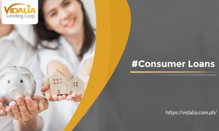 Everything You Need to Know Before Investing in a Consumer Loan